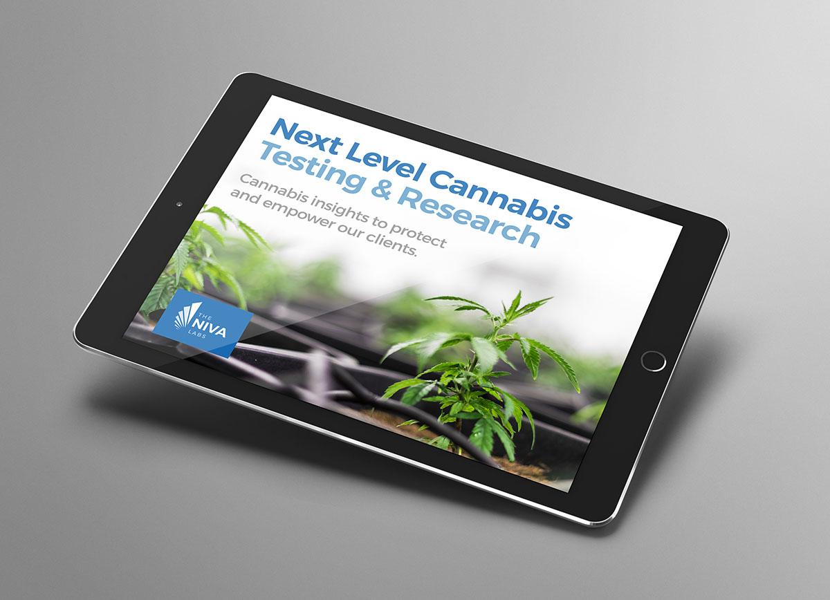 Responsive design shown on an iPad