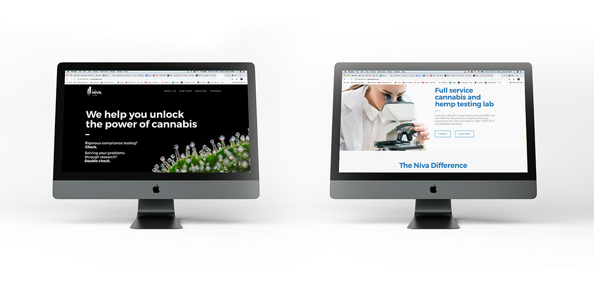Web design landing page mockup for The Niva Labs.